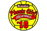 Volleyball Magnet  - Design 1 - Yellow Volleyball