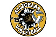 Volleyball Magnet  - Design 6 - Breakout Image